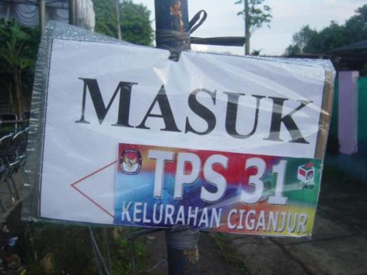 p-tps-31